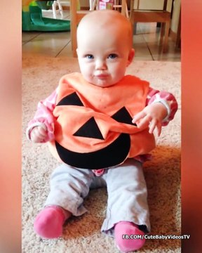 Funniest Baby Wearing Costume - Funny Baby Videos
