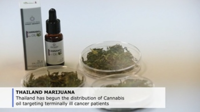Thailand starts distribution of medical marihuana to cancer patients