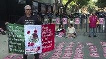 Julia, la 'profesional' de las protestas de México