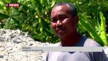 Indonésie : Bangun, un «village poubelle» envahi par le plastique