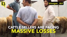 Days Before Bakrid, Business in Srinagar is Grim