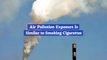 Air Pollution Will Destroy Your Lungs