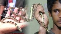 ಹಾರುವ ಹಾವನ್ನು ಹಿಡಿದ ಯುವಕ..? | flying snake | Oneindia Kannada