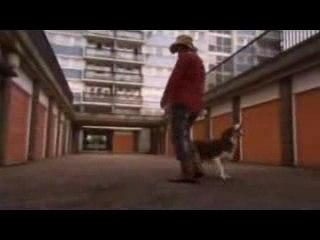 Extrait - Maxxie's Dad Dance