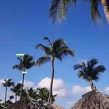 Beautiful Diani Beach Hotels - Leisure Lodge Beach and Golf Resort