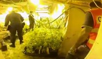 Lauriano (TO) - Fabbrica di marijuana in villa bunker (21.08.19)