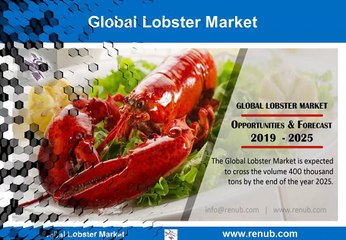 Global Lobster Market - Importing & Exporting Countries, Forecast 2019-2025
