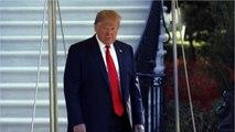 Trump Looking Into Potential Tax Cuts