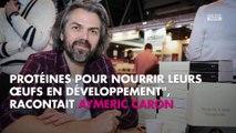 Aymeric Caron défend les moustiques, Eric Naulleau se paie sa tête sur Twitter