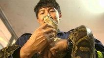Bangkoks Feuerwehr für Schlangen