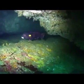 Relaxing Video - Cascading water - beachvolleyball - Scuba diving with Music