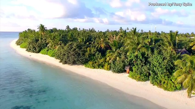Ever Dreamt of Owning a Private Island? Now You Can… Sort Of