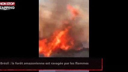 Brésil : la forêt amazonienne est ravagée par les flammes (vidéo)
