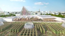 The Incredible Benefits Of Rooftop Farms Taking Over Cities