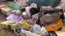 Los servicios de limpieza sacaron una tonelada y media de basura