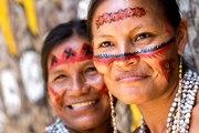 L'Amazonie abrite le plus grand nombre de tribus isolées du monde