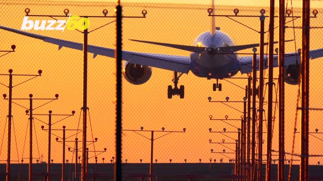 Google Flights Guaranteeing Cheapest Airline Prices