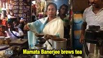 Mamata Banerjee brewis cups of tea