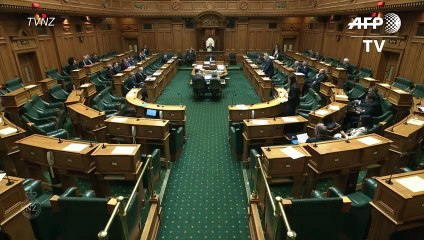 Un bebé en el parlamento neozelandés