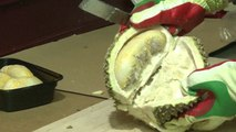 Durian demand in China sparks environmental concerns in Malaysia