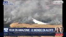 """""""Une crise internationale"""", c'est ce que dénoncent l'ONU et Emmanuel Macron face aux incendies en Amazonie"""