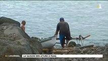 Au cœur du fenua : la pêche aux ature