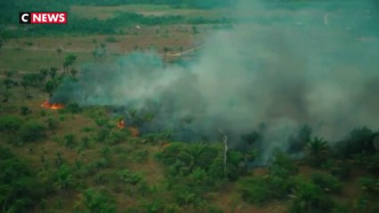 Incendies en Amazonie : attention aux fausses photos relayées sur les réseaux sociaux