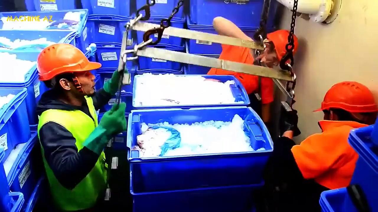 Amazing Shrimp Fishing And Catch Fish in The Sea, Fish & Shrimp Processing Skill