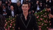 Shawn Mendes apologises for insensitive teen tweets
