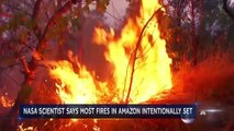 Worldwide Pleas To Save The Amazon As Fires Decimate Rainforest