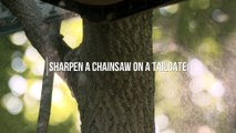 How to Sharpen Your Chainsaw in the Field