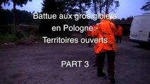 Chasse au sanglier,Battue Polonaise,Sanglier de Pologne (Part 3)   Wild Boar Hunt, Polish Beaten, Polish Wild Boar (Part 3)