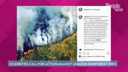 Amazon Rainforest Fires Threaten Climate Change Efforts — What's at Stake for the Planet