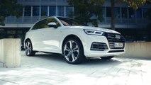 Der Plug-in-Hybrid Audi Q5 55 TFSI e im Test