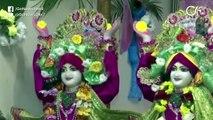 Janmashtmi Celebrated With Traditional Fervour