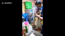 Man pranks friends with 'snake' in fridge