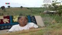 Đánh Cắp Giấc Mơ Tập 25 - Phim Việt Nam VTV3 - Phim Danh Cap Giac Mo Tap 26 - Phim Danh Cap Giac Mo Tap 25
