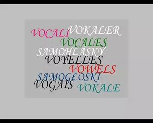 VOYELLES SAMOHLÁSKY VOWELS VOCALES etc.