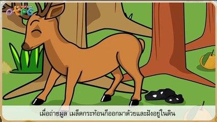 สื่อการเรียนการสอน เราผองเพื่อนกันป.2ภาษาไทย