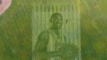Un couple crée un portrait géant de Kobe Bryant avec une tondeuse à gazon