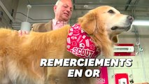 Super Bowl: il achète une pub à 6 millions de dollars pour remercier d'avoir sauvé son chien