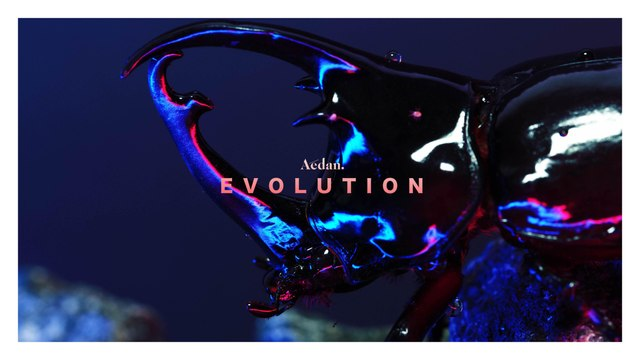 Aedan - Evolution (Official Music Video)
