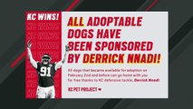 Kansas City Chiefs Defensive Lineman Celebrates Super Bowl Win By Paying Dogs' Adoption Fees