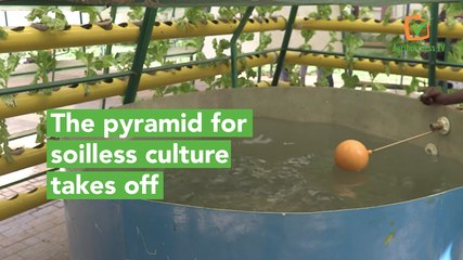 Burkina Faso: The pyramid for soilless culture takes off