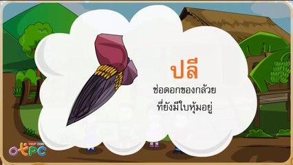 สื่อการเรียนการสอน คุณค่าของกล้วยป.2ภาษาไทย