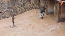 Un sauvetage incroyable au Rwanda