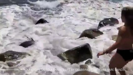 A Young Girl Saved A Shark's Life By Grabbing It With Her Bare Hand