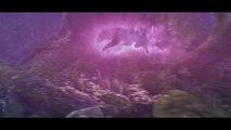 20190826 world_of_warcraft_cinematic_trailer