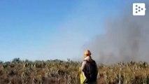 Forest fires devastate the Amazon rainforest in Brazil