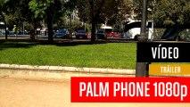 Palm_1080